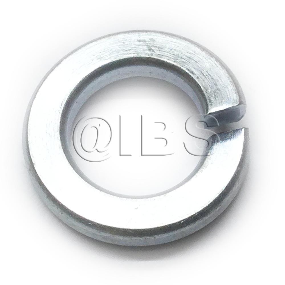 MBW Seal 17711